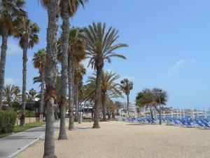 Paphos Airport Paphos Beaches 6